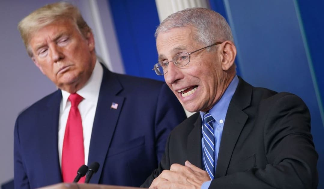 News - Dr. Anthony Fauci Prompts Americans To 'Think Twice' Roughly Outing Voyage Agendas - Trend Press Wire